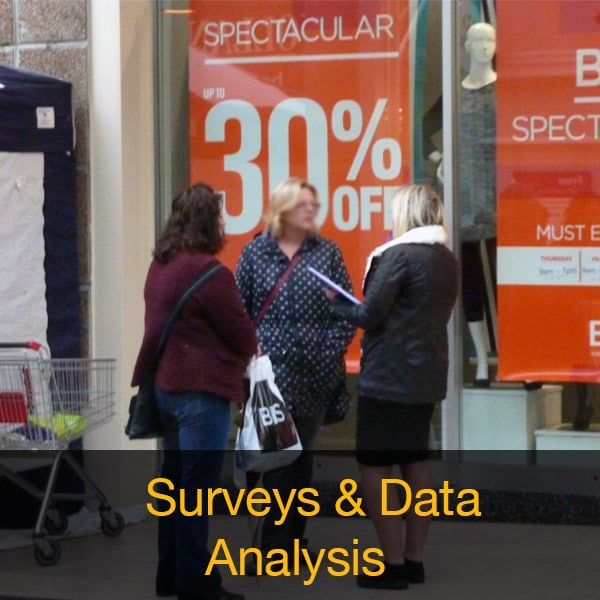 Surveys & Data Analysis